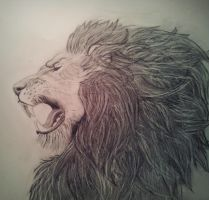 King by Drawdin