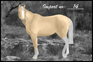 Import 14 by Orstrix