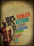 the human body 2 by cyrusaurus