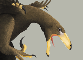 Deinonychus Close up by DELIRIO88