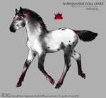A3320 Foal Design by OpalSkye