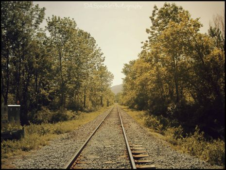 Down The Tracks. by Sparkle-Photography