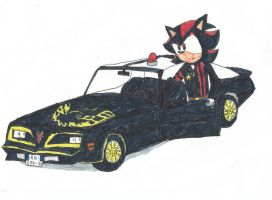Inspector Shadow The Hedgehog and his Trans-Am by Fast-Subaru71