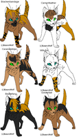 Warrior cat adoptables 26 GONE by Shadowpaw909