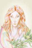 Elven Light by marisoly