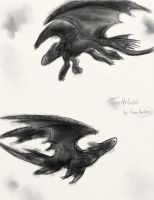 Toothless by Adam-Anellaer