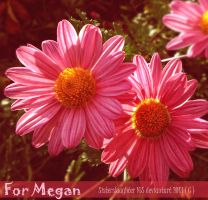 For Megan by Sisterslaughter165