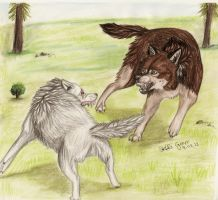 Suke vs Saidy by SaidyWolf