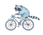Raccoon on a Bicycle by Madelei