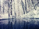 Snow on the Creek by GravityDefiant