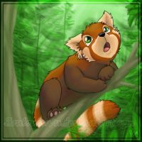 Red panda are awesome by Zoulouluvu
