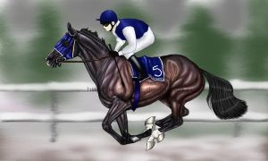 Wicked Winter Classic Entry by wideturn