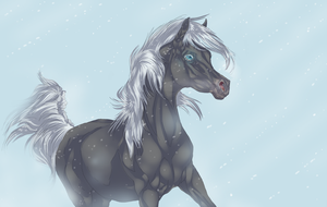 Winter has come by Roiuky