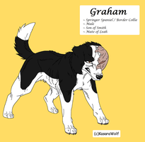 Graham 2012 Reff by legally-psychotic
