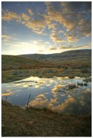 Wyoming Reflections by tourofnature