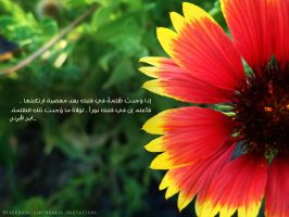 Heart Purity - Quote 75 by muslim2proud