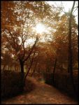 autumn in the park - vol.2 by dolma33