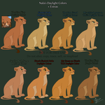 Nala Daytime Colors + Extras by Anyahs