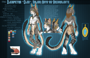 Character Sheet: Cleo Valion by FrostWyrm102