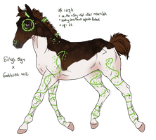 1076 Padro Foal Import for GingerDrama by ArtOfFreedom