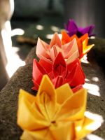 Origami lotus flowers by outinthegarden
