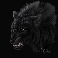 Wolf face doodle by Atan