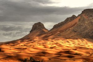 Golden dunes by BinAmin