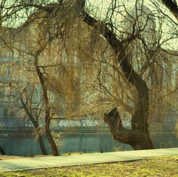 landscape by the water by fuZfa