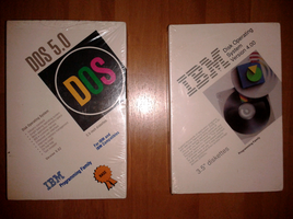 IBM DOS by valleyofearwigs