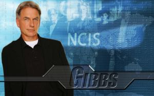 Gibbs Wallpaper by PhantomKat813