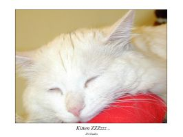 2S kitten ZZZzzz by longbow