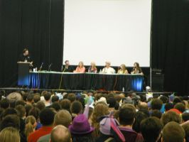 Voice Acting Panel At BronyCon by DestinyDecade