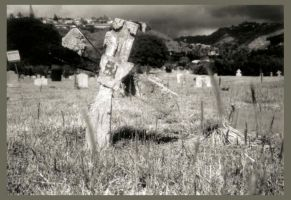 Holga Cemetary IV by spirals