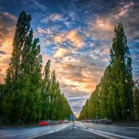 Munich, Road to the University by alierturk