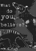 Thylacine:What Do You Believe? by BooYeh