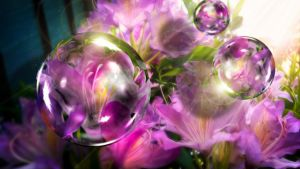 Rhododendron Bubbles by hallbe