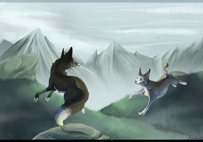 Chase by Llutra