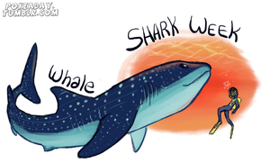 Whale Shark by Pokeaday