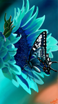 Teal Flower And Butterfly by KUTEDYMPLES