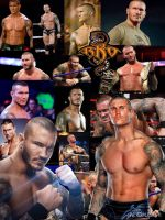 Randy Orton Collage by WWE-Undertaker