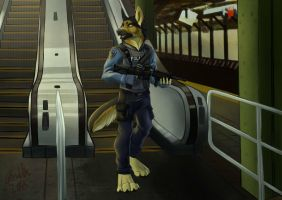 C - Subway Patrol by IrishWolven