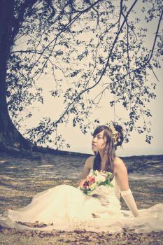 ...the autumn bride... by reastphoto