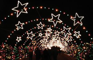 Trail of Lights by zoogirl