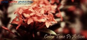 Color Tone Ps Action by canalphotoshop