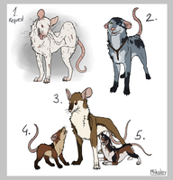 Adoptables - Madra III CLOSED by Mikaley