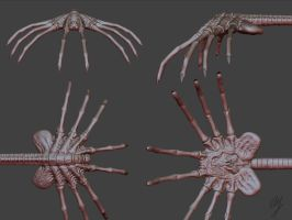 Facehugger - WIP1 by turx