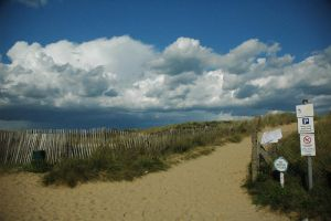 Stormy Dunes by turlough