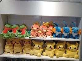 December 2014 NW Pokemon Plushies Trainer Sized by HinataFox790