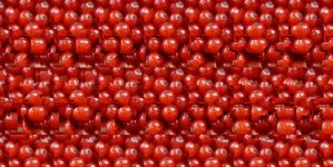 Stereogram Picture 131 - Redcurrant by k45mm