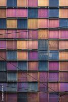 windows by canfora-g